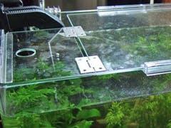 K 様 水槽の天板ガラス