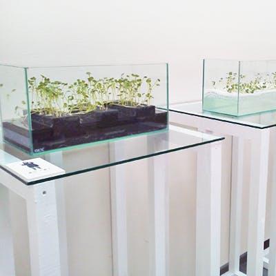 N大学 様 展示台の天板ガラス