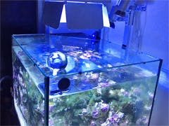 S様 海水魚水槽のフタ