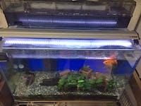 O様 金魚水槽の蓋